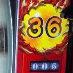 ベルカウンター36