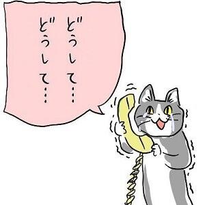 電話猫「どうしてどうして」